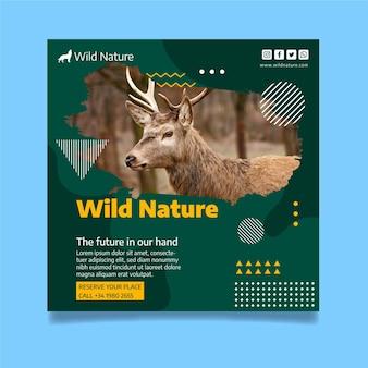 사진과 함께 야생 자연 전단지 서식 파일