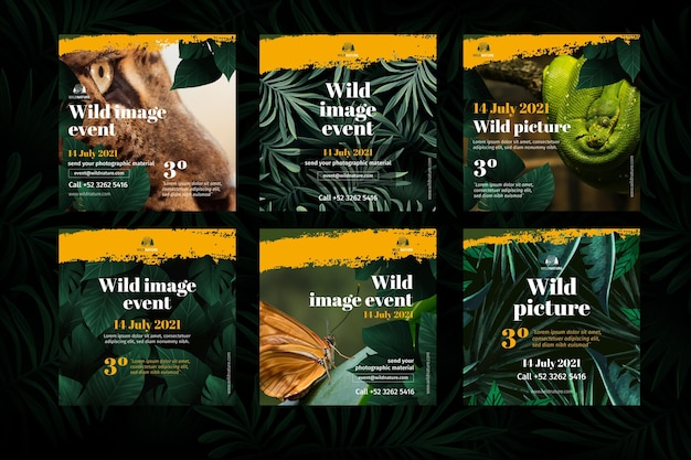 Wild nature instagram posts
