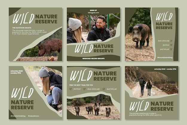 野生の自然のinstagramの投稿
