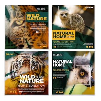야생의 자연 instagram 이야기