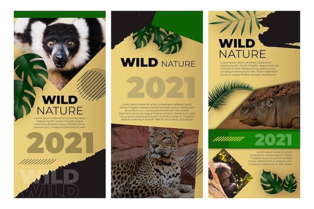 野生の自然のインスタグラムストーリー