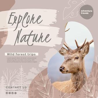 야생 자연 제곱 된 전단지 서식 파일