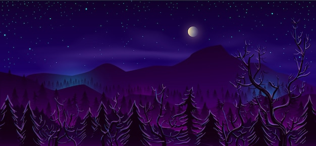 Wild northern land night landscape cartoon