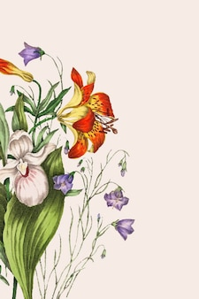 Wild orange red lily, harebell, and showy ladys slipper 꽃다발 벡터