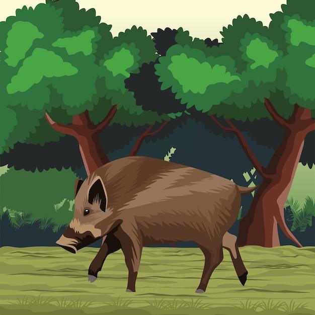 Дикая свинья животная природа в пейзаже
