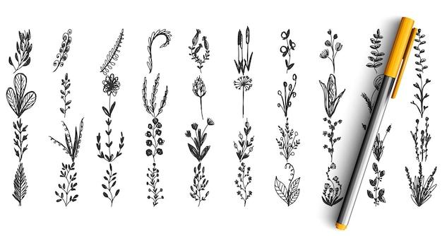 야생 식물 낙서 세트. 연필 펜 손으로 그린 된 스케치의 컬렉션입니다. 초본 정원 필드 잔디 잡초 꽃.