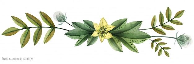 Акварельная виньетка диких растений