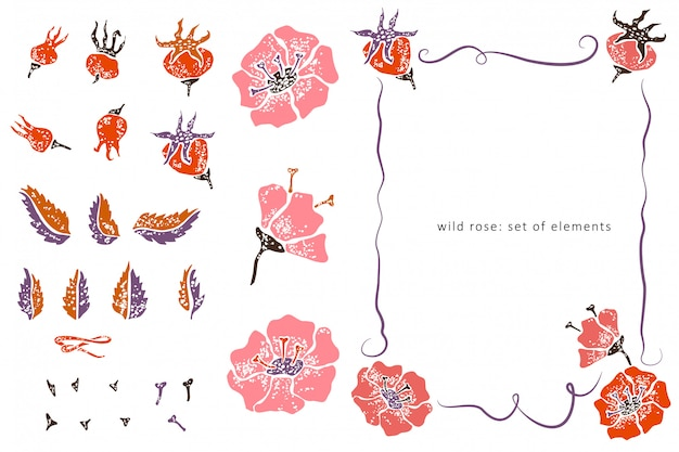 Wild rose elements and border in lino cut style