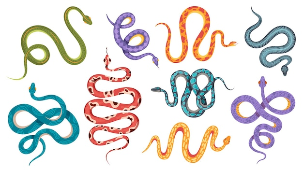 야생 뱀. 추상적이고 자연스러운 패턴의 다채로운 산호 뱀 문신. 독사, 아나콘다 크롤링 및 쉿. 독사 벡터 집합입니다. 그림 파충류와 뱀, 독사 및 아나콘다