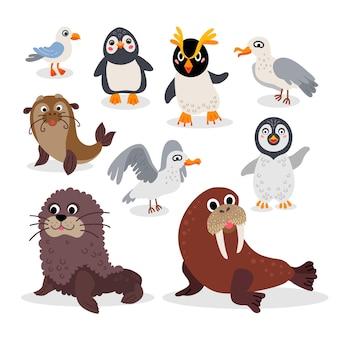 야생 남극 동물 평면 스타일 세트