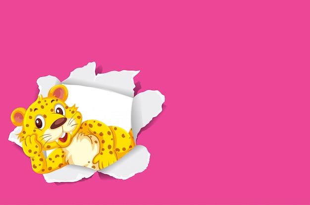 Дикий тигр на розовой бумаге