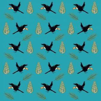 野生のオオハシ飛ぶ鳥のシームレスパターン