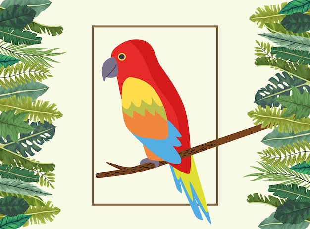 Wild tropical parrot bird nature in square frame