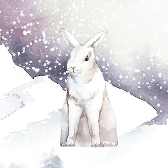 Wild white rabbit in a winter wonderland