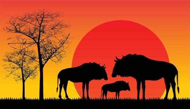 アフリカのヌーの夕日