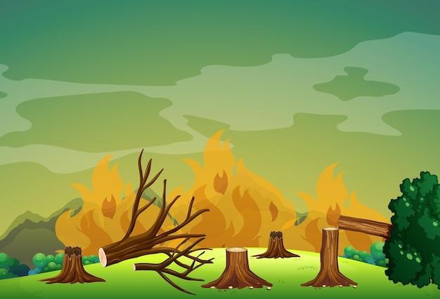 森の中の山火事