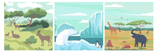 Wildlife design concept with landscapes of various climate zones illustration