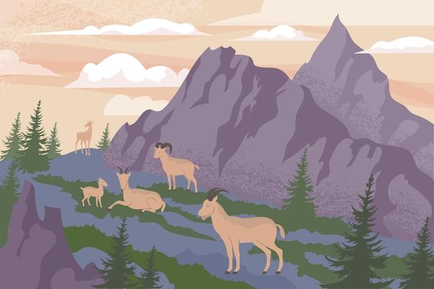 절벽 그림 앞에 야외 고지 풍경과 염소 무리가 있는 야생 동물 산의 평평한 구성