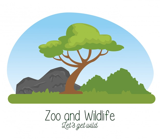 Wildlife reserve with tree and nature mountains