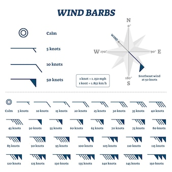Wind barbs illustration