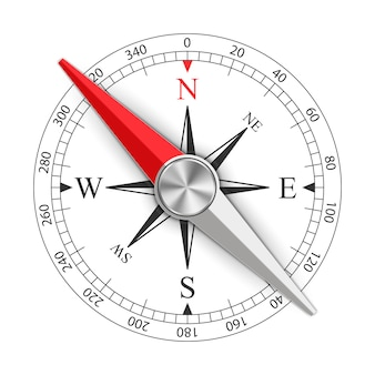 Wind rose magnetic compass