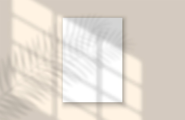 창 및 잎 실제 그림자는 창 오버레이 모형에서 템플릿 열대 잎과 빛을 조롱합니다...
