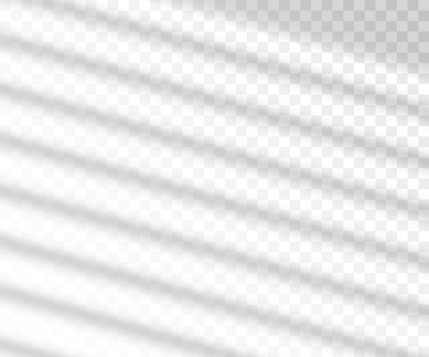 창 긴 그림자 실루엣 효과 오버레이, 투명 배경에 현실적인 그림. 명함을위한 햇빛 레이아웃 템플릿입니다.