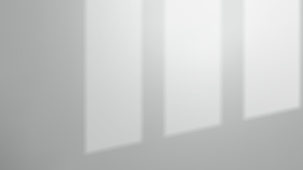 빈 벽에 창 그림자
