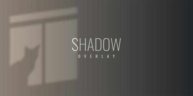 Дизайн шаблона иллюстрации фона наложения тени окна