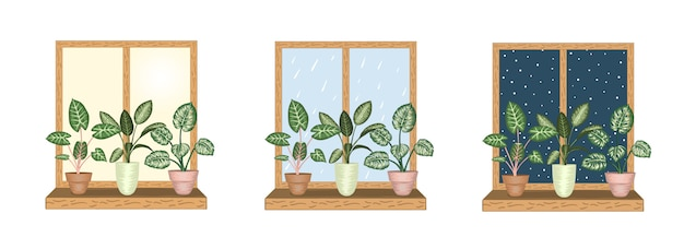 Windows with tropical houseplants in pots. rainy,  snowy,  sunny weather views. watercolor style.