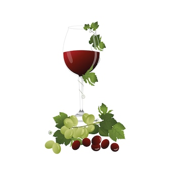 Wine and red green grape with leaf vector