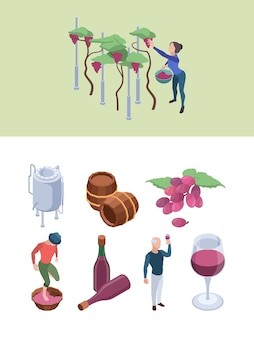 Wine production. vineyard people working winery processes technology grapes drink bottling big barrels vector isometric set. alcohol drink in glass, vineyard winery, wine production illustration
