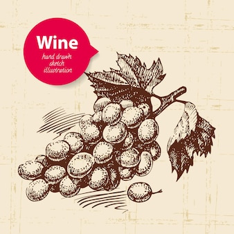 Wine vintage background with banner. hand drawn sketch illustrationof grapes