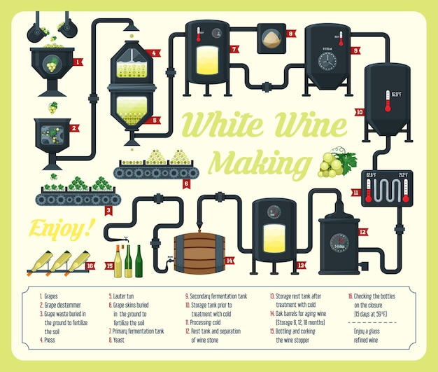 포도주 양조법 인포 그래픽 설명 디자인