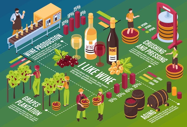 Winery isometric flowchart drink stages production from vineyard till wine aging on green horizontal illustration