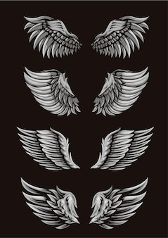 Wing template bundle for illustration or logo