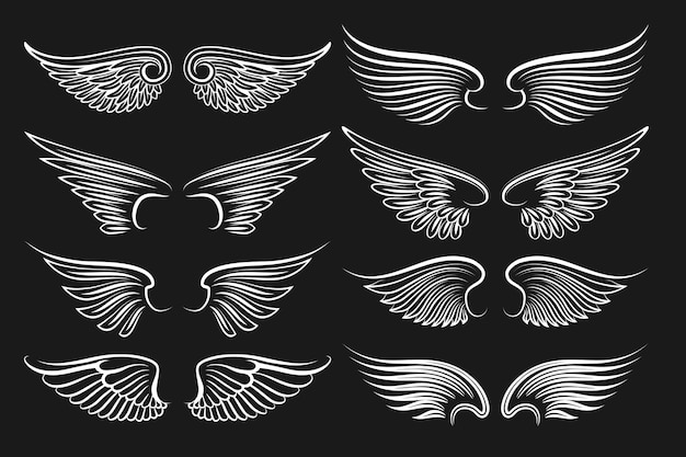 Wings black elements.  angels and birds wings. illustration of white wings