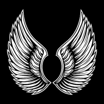 Wings flap black and white