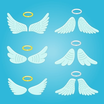 Wings and nimbus. feather angels wings