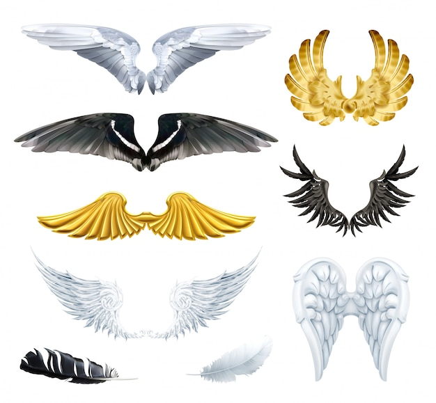 翼、セットのイラスト