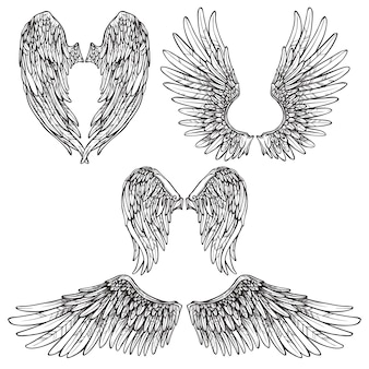 Wings sketch set