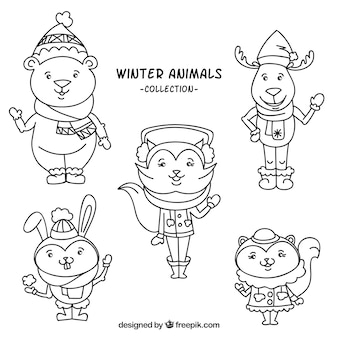 服を着て冬の動物コレクション