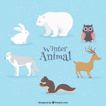 Зимний пакет для животных в плоском дизайне