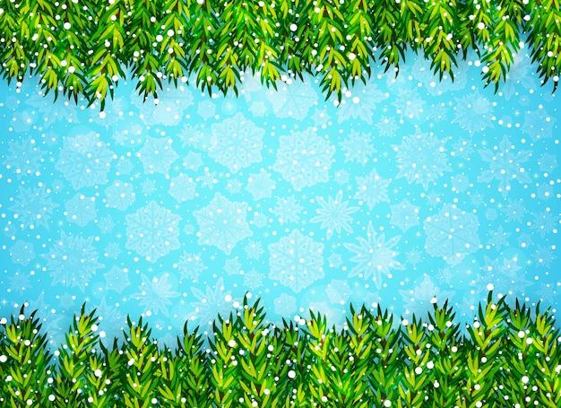 Зимний фон с ветвями елки и снегом на синем