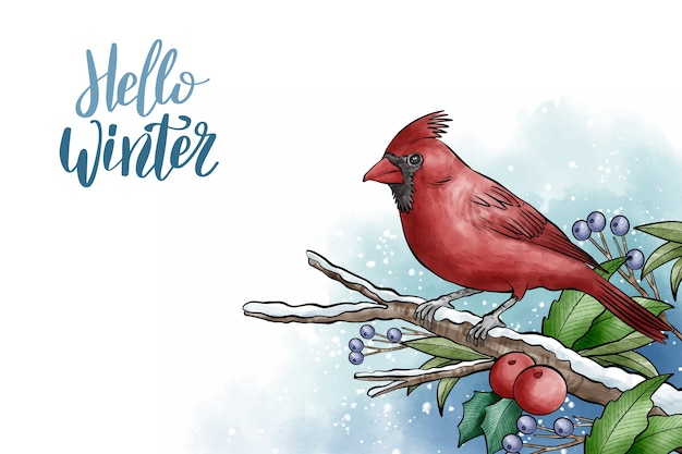 Winter background with cute bird