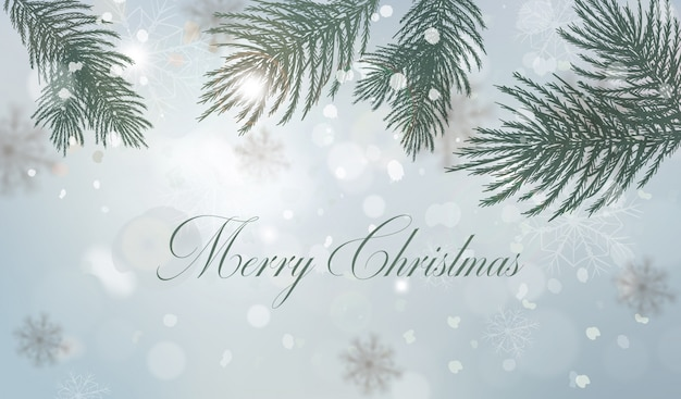 Winter background with fir tree branch decorations