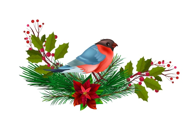 Winter christmas floral illustration with red bullfinch,holiday fir branches,holly isolated on white