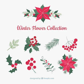 Winter flower collection