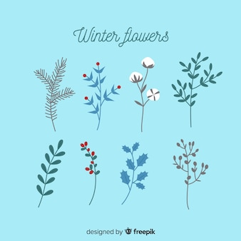 Winter flowers collection