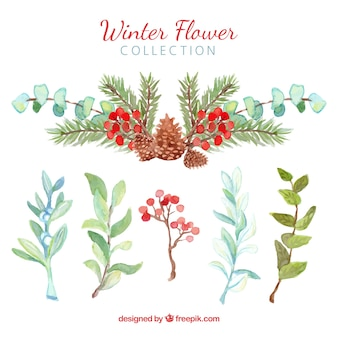 Winter flowers in green and red watercolour
